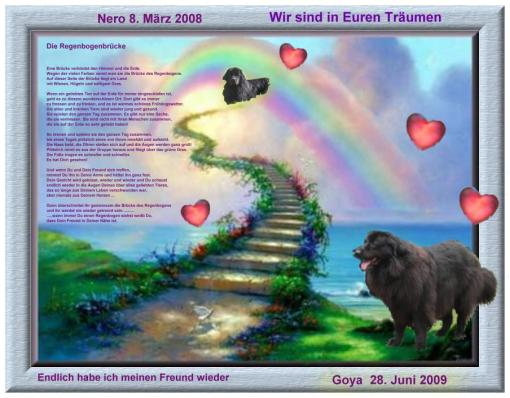 Neufis Regenbogenbrücke